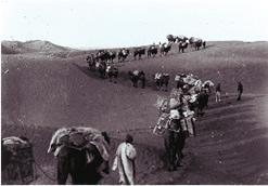 西域の砂漠を進む大谷探検隊